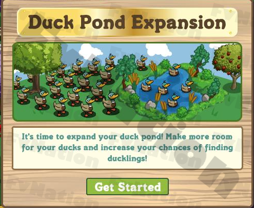 A second go at Duck Pond Expands